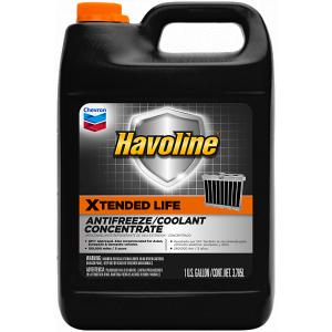 CHV HAV XTEND LIFE 50/50 (55/208DR)